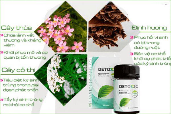 Thành phần trong Detoxic